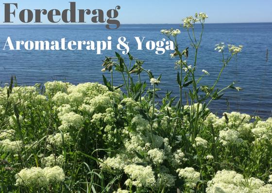 Aromaterapi, æteriske olier, meditation, yoga, guidede meditationer, bodyscan, event, foredrag
